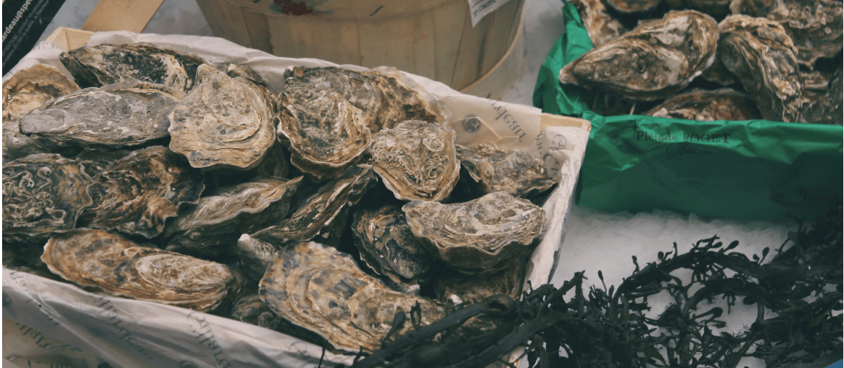 Raw Oysters increase libido