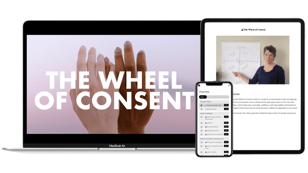 Wheel of Consent Online Course